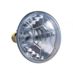 """Лампа """"PAR38"""""""